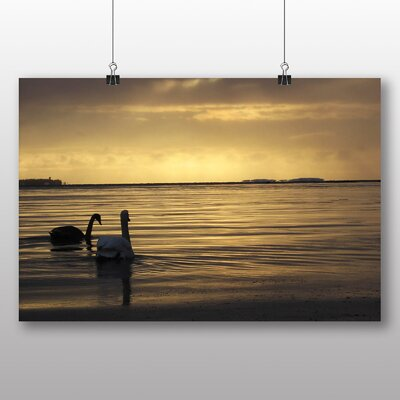 Big Box Art Two Swans Photographic Print Wrapped on Canvas