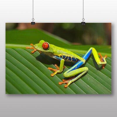 Big Box Art Tree Frog No.2 Photographic Print