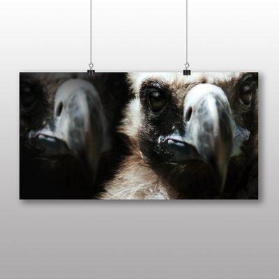 Big Box Art Vultures Photographic Print