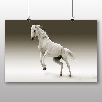 Big Box Art White Horse No.2 Photographic Print Wrapped on Canvas