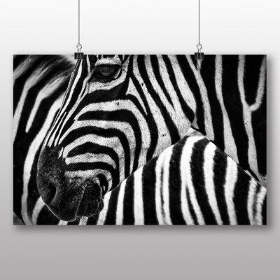 Big Box Art Zebras Photographic Print Wrapped on Canvas