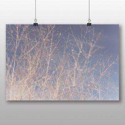 Big Box Art 'Twigs on a Tree' Photographic Print