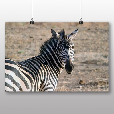 Big Box Art Zebra Photographic Print on Canvas