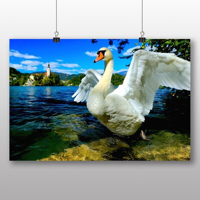 Big Box Art Swan Slovenia Lake Photographic Print