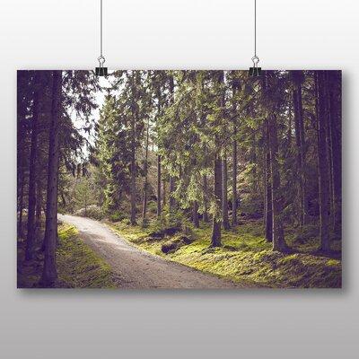 Big Box Art Woodland Path Photographic Print