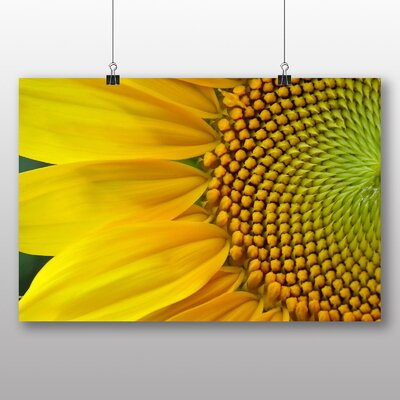 Big Box Art Yellow Sunflowers Flower No.1 Photographic Print Wrapped on Canvas