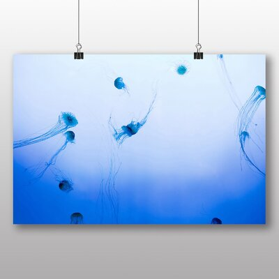 Big Box Art The Jellyfish Graphic Art on Canvas