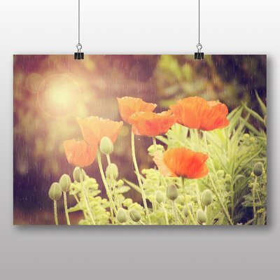 Big Box Art Vintage Poppy Field Flower Graphic Art Wrapped on Canvas