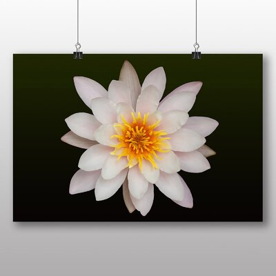 Big Box Art White Lily Flower No.1 Photographic Print Wrapped on Canvas