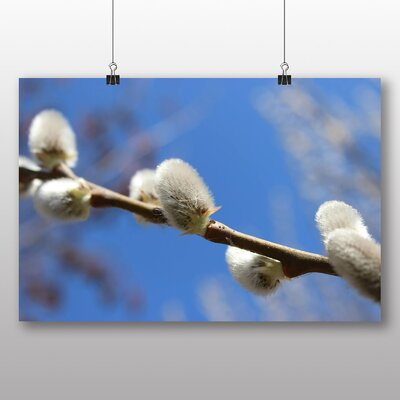 Big Box Art Willow Tree Photographic Print on Canvas