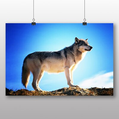 Big Box Art Wolf Photographic Print on Canvas