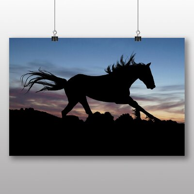 Big Box Art Wild Horse Sunset Photographic Print