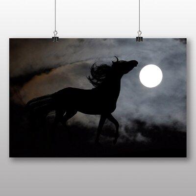 Big Box Art Wild Horse Moonlight Photographic Print on Canvas
