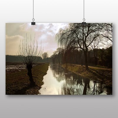 Big Box Art Weeping Willow Tree No.2 Photographic Print