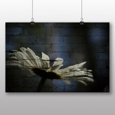 Big Box Art White Daisy Flower No.2 Photographic Print on Canvas