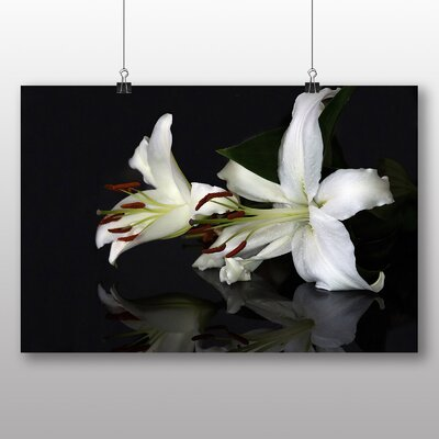 Big Box Art White Lily Flower No.2 Photographic Print Wrapped on Canvas