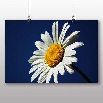 Big Box Art White Daisy Flower No.7 Photographic Print