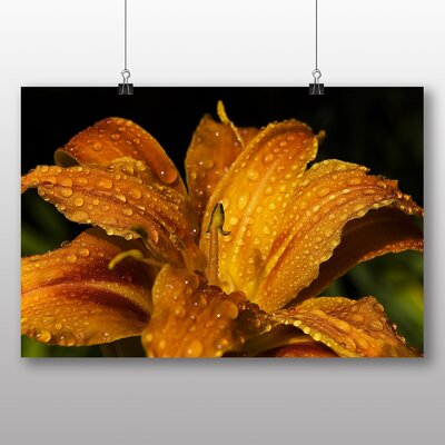 Big Box Art Yellow Lily Flower Photographic Print