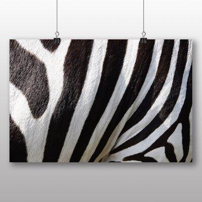 Big Box Art Zebra No.3 Photographic Print