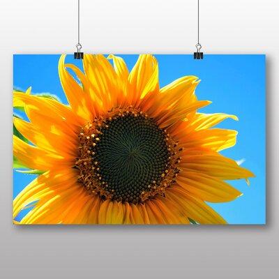 Big Box Art Yellow Sunflowers Flower No.10 Photographic Print