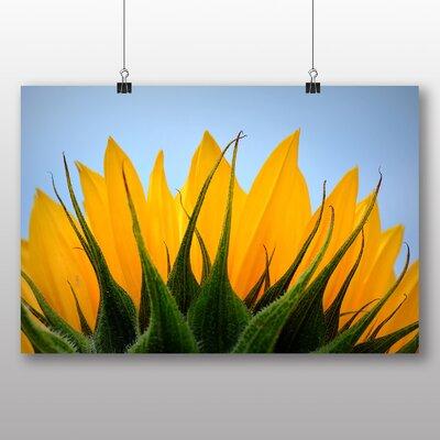 Big Box Art Yellow Sunflowers Flower No.8 Photographic Print on Canvas