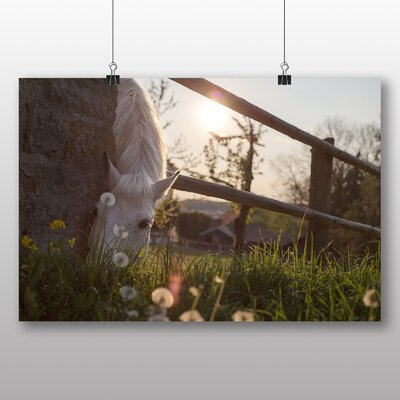 Big Box Art White Horse No.3 Photographic Print Wrapped on Canvas