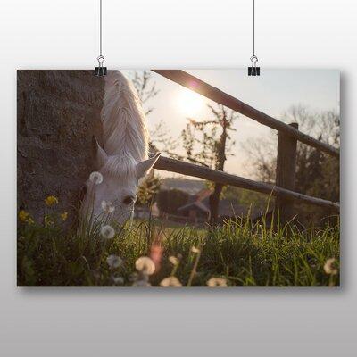 Big Box Art White Horse No.3 Photographic Print