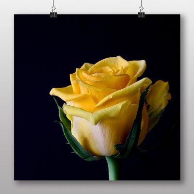 Big Box Art Yellow Orange Rose Flower No.6 Photographic Print