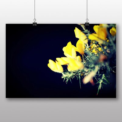 Big Box Art 'Yellow Blooming Flowers' Photographic Print