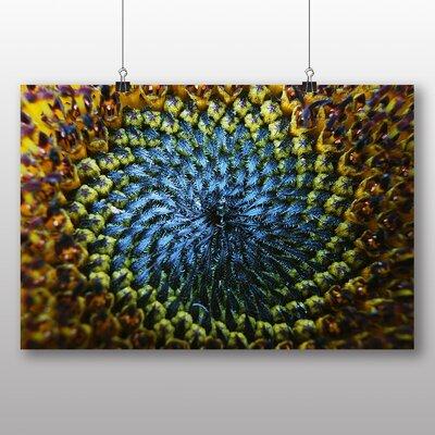 Big Box Art Yellow Sunflowers Flower No.7 Photographic Print
