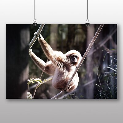 Big Box Art White Handed Gibbon Photographic Print on Canvas