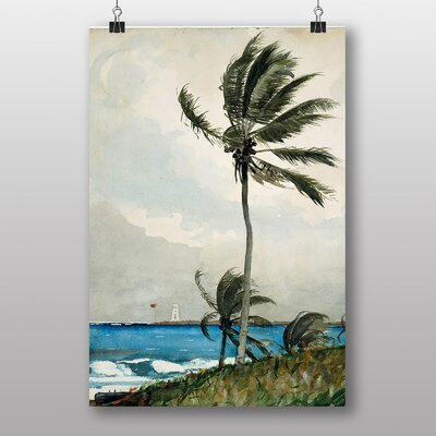 Big Box Art Palm Tree by Winslow Homer Art Print