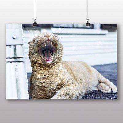 Big Box Art 'Yawning Cat' Photographic Print