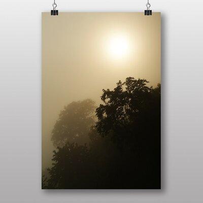 Big Box Art 'Sunlight and Trees' Photographic Print