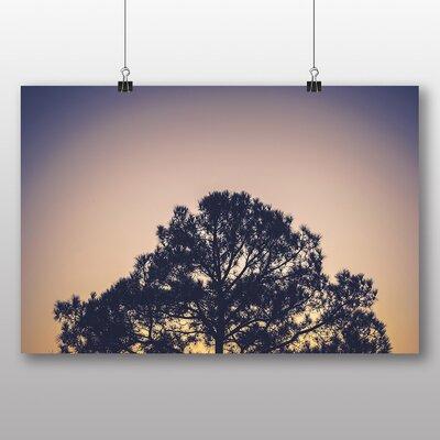 Big Box Art 'Sunset and Tree' Photographic Print