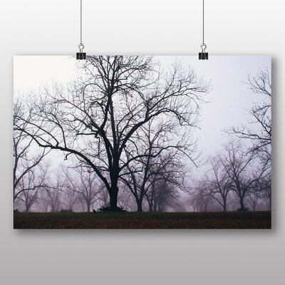 Big Box Art 'Misty Morning Park' Photographic Print