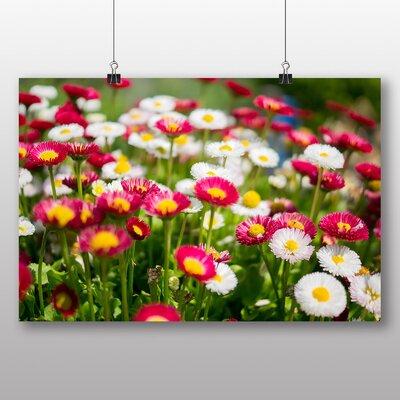 Big Box Art 'Pretty Flowers No.1' Photographic Print