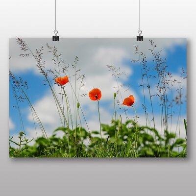 Big Box Art 'Poppy Flower Meadow' Photographic Print