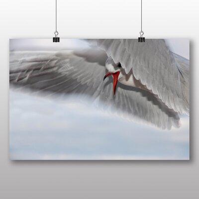 Big Box Art Seagull Graphic Art