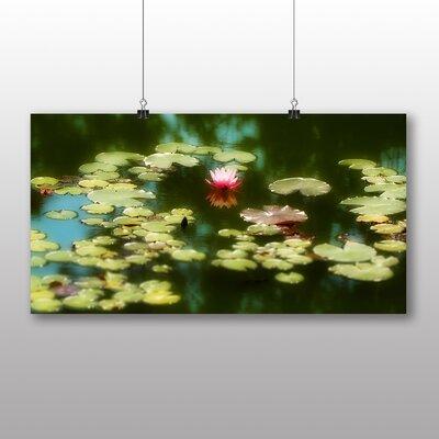 Big Box Art Water Lily Flower No.2 Art Print