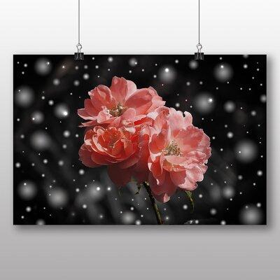 Big Box Art Pink Rose Flower No.1 Graphic Art