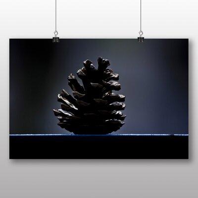 Big Box Art Pine Cone Photographic Print