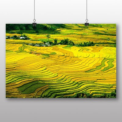 Big Box Art Rice Terraces Vietnam Photographic Print