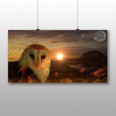 Big Box Art Owl and Moon Graphic Art