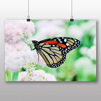 Big Box Art Monarch Butterfly No.2 Photographic Print