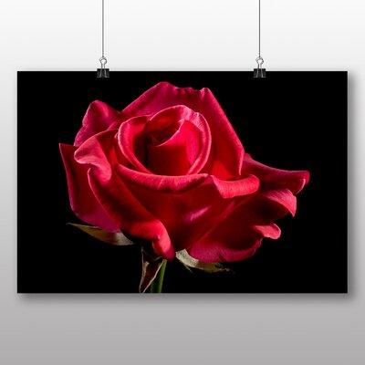 Big Box Art Red Rose Flower No.4 Photographic Print