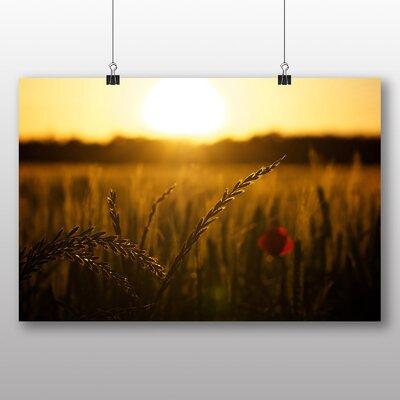 Big Box Art Poppy Field Flower No.3 Photographic Print