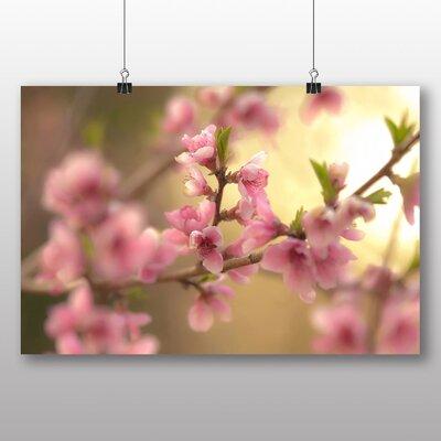 Big Box Art Spring Bloom Photographic Print