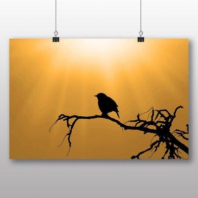 Big Box Art Sparrow Photographic Print
