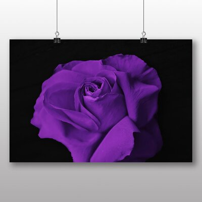 Big Box Art Purple Rose Flower No.6 Photographic Print